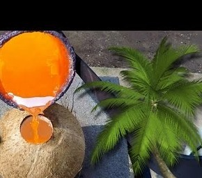 Pouring molten copper inside a coconut